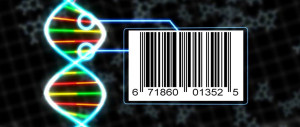Barcoding DNA