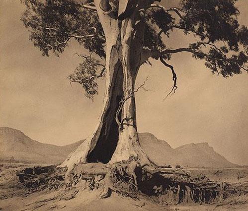 Spirit of endurance NSW Natl Gallery 499x425