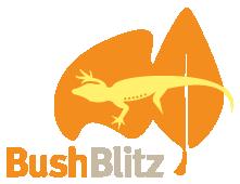 BushBlitzLogo_orange